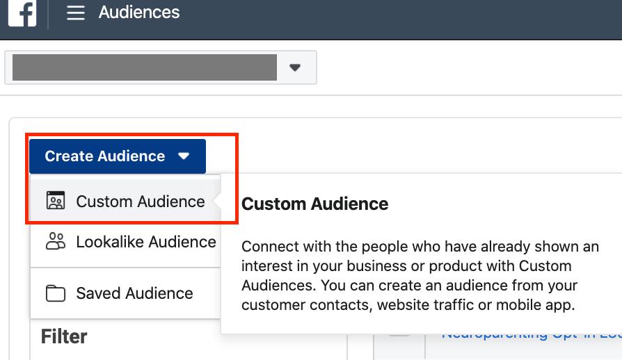 create custom audiences